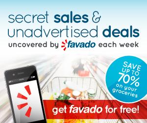 Favado-Blogger-300x250